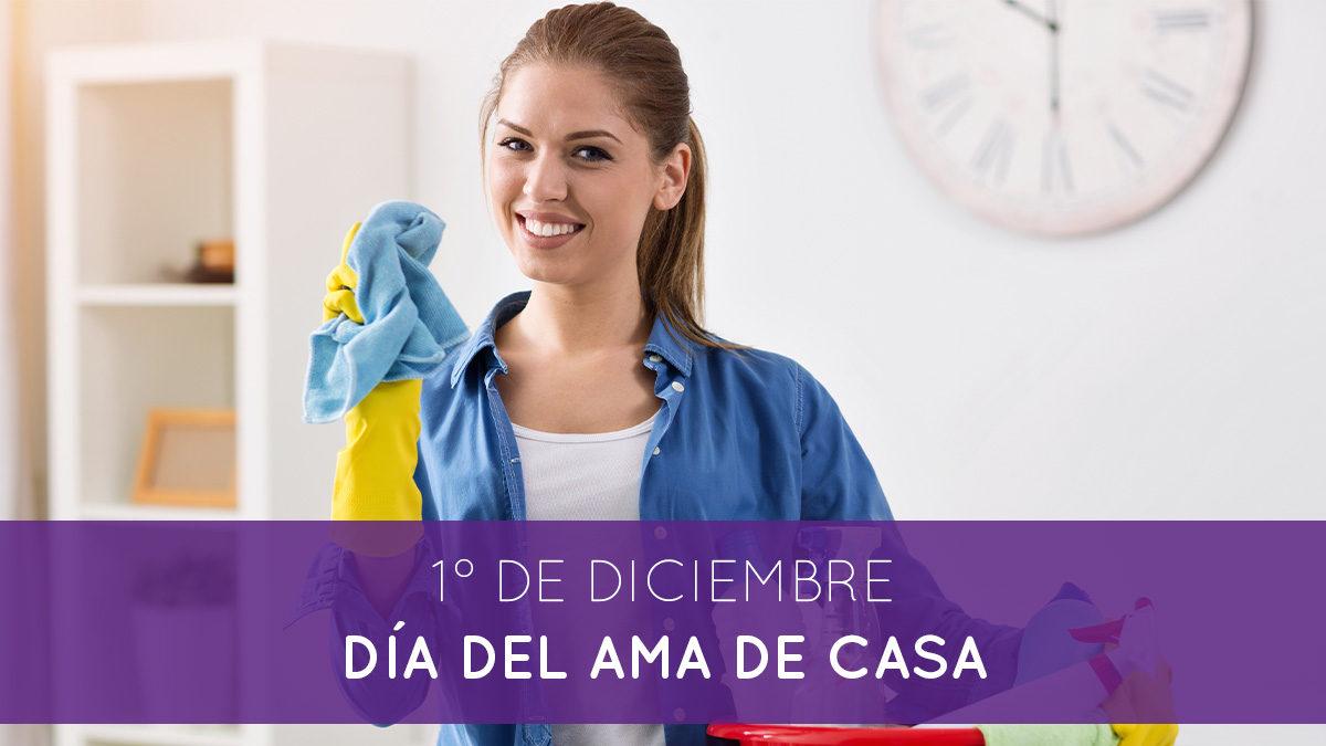 1° De diciembre: Día del ama de casa